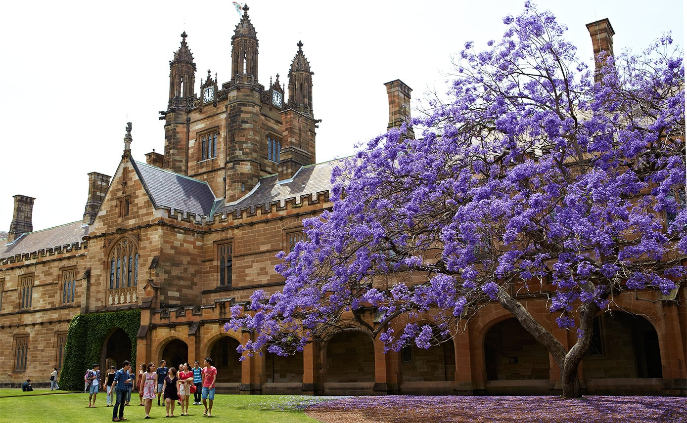 Healthcare Administration law sydney uni