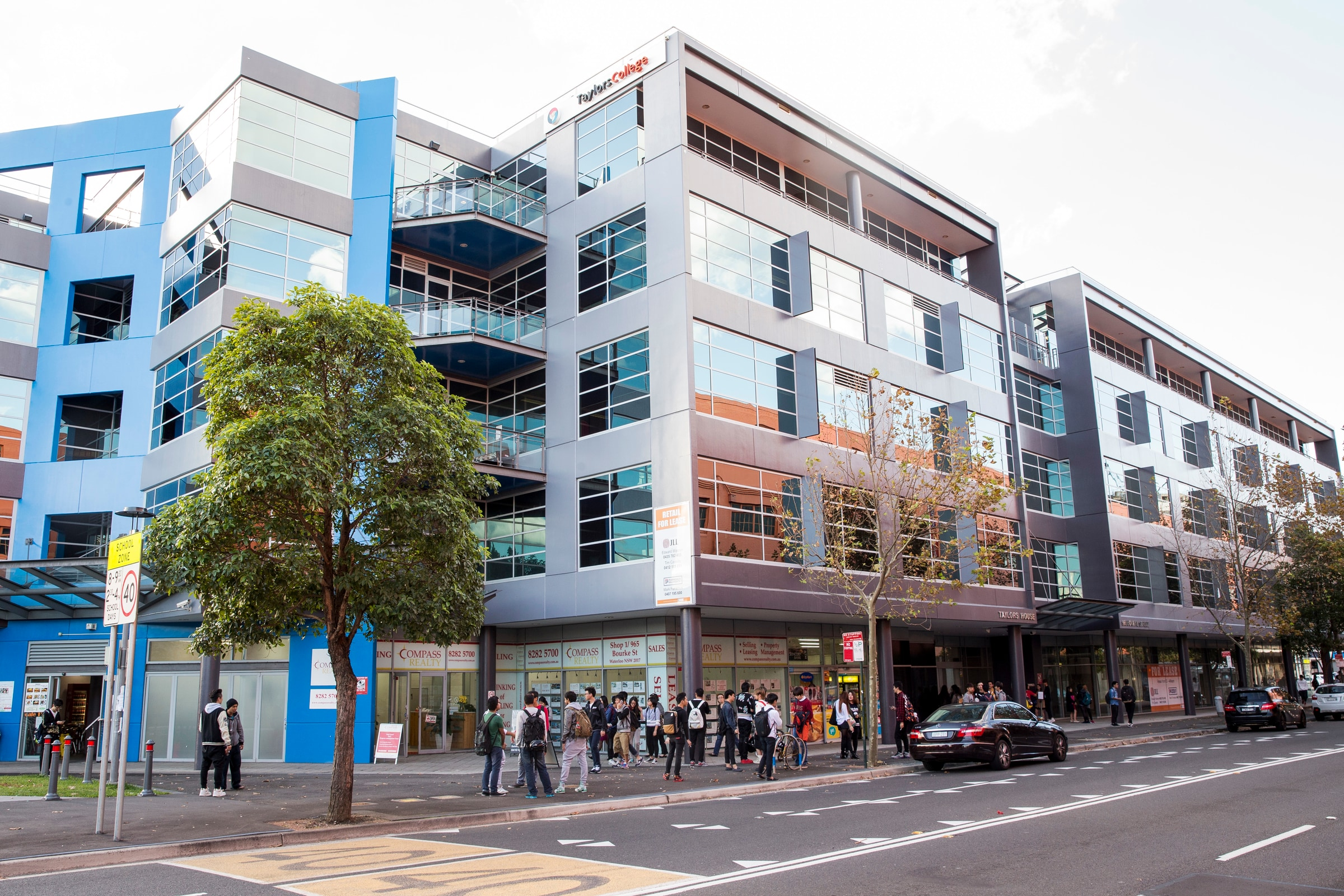 Medicine taylors college sydney foundation