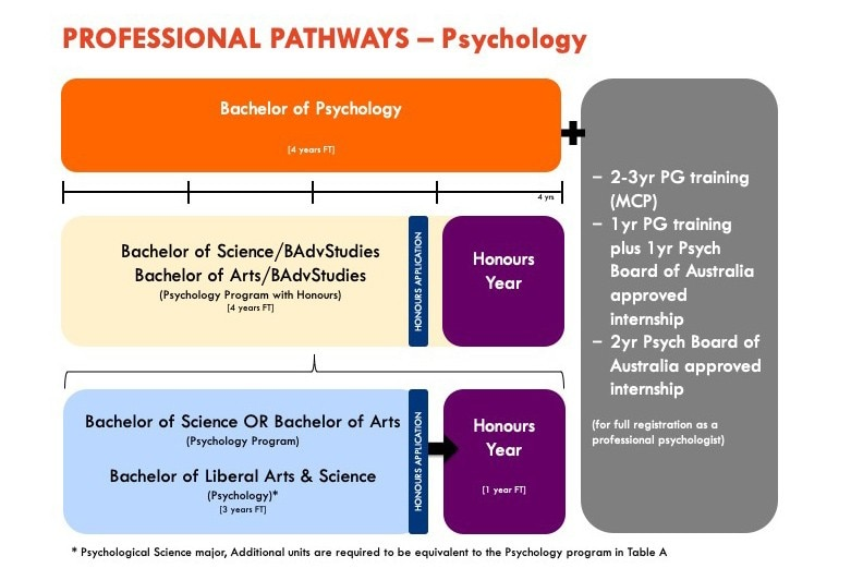 Illustration of the steps to become a psychologist as specified by text above
