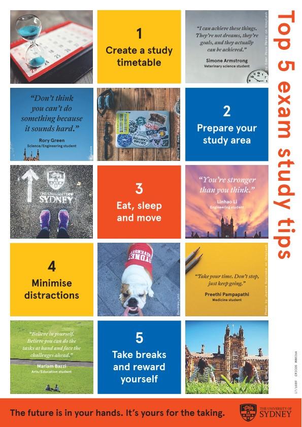 Procrastination study pdf