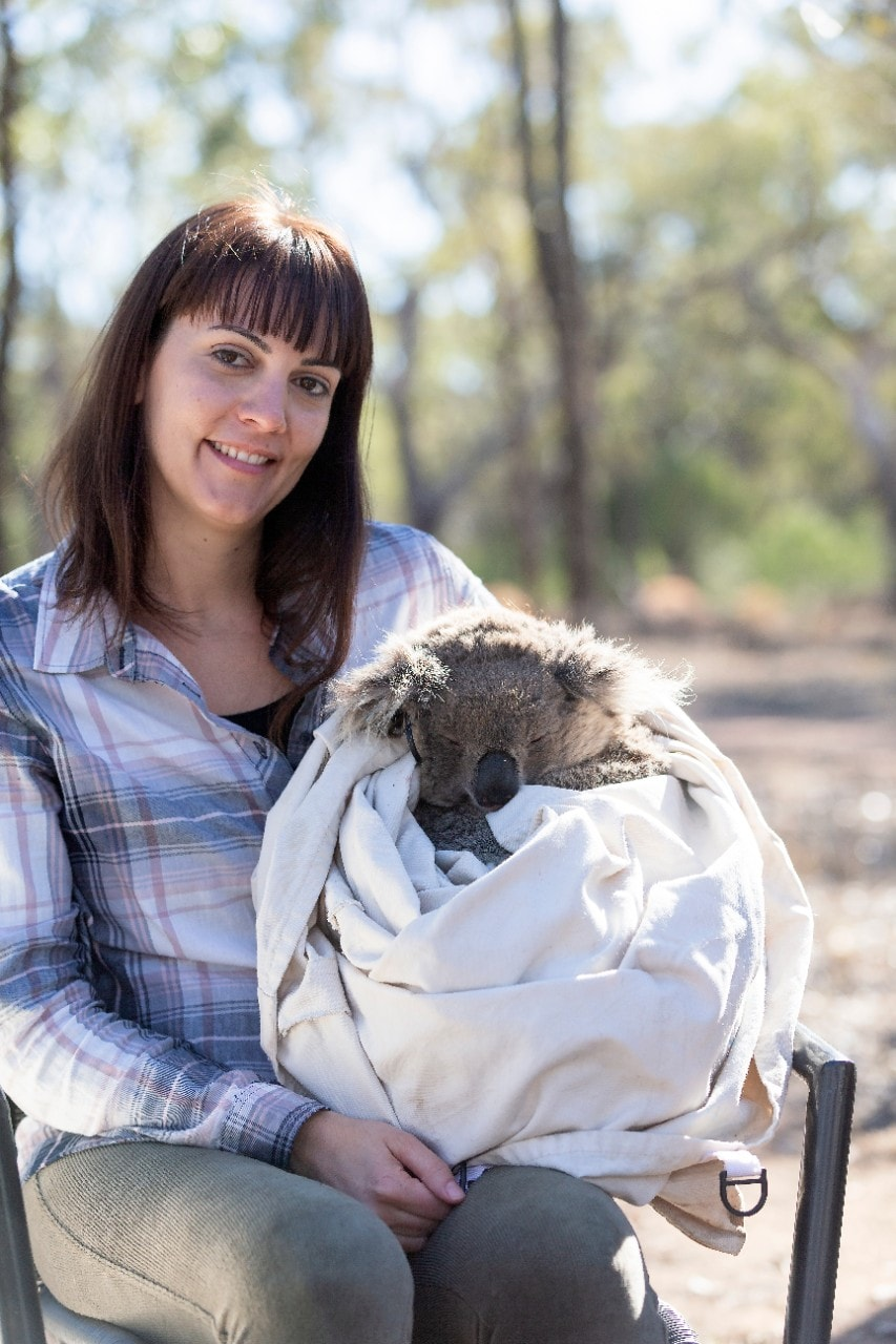 Dr Valentina Mella with koala joey in Gunnedah.