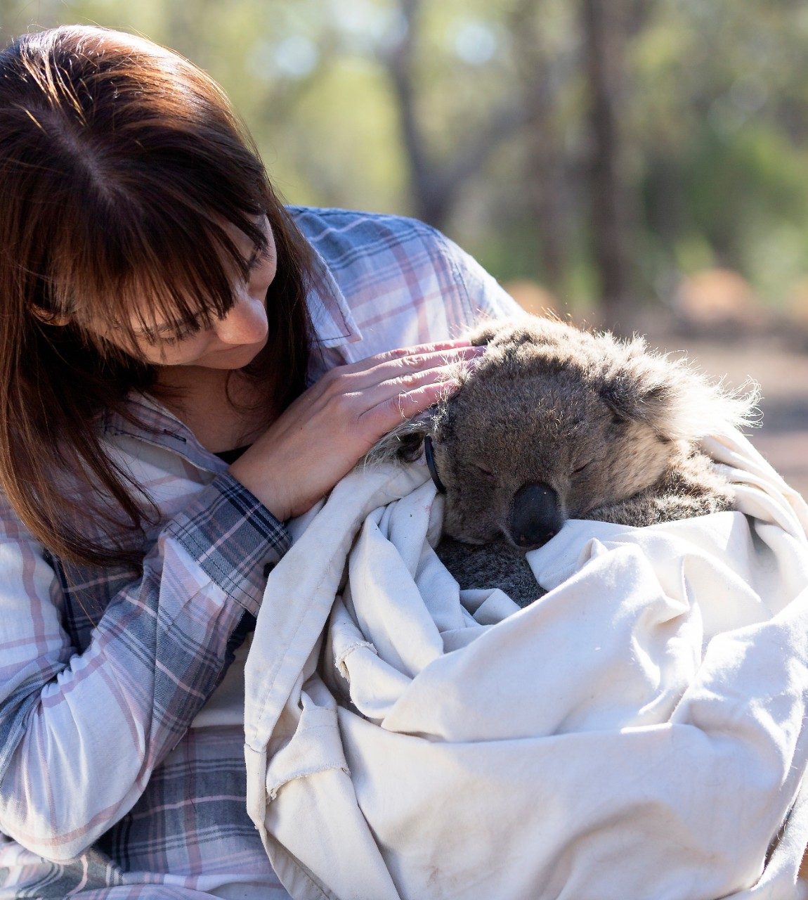 photo of Dr Valentina Mella holding a koala in a blanket