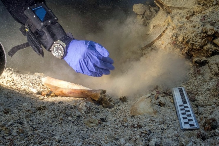 Antikythera shipwreck skeleton remains