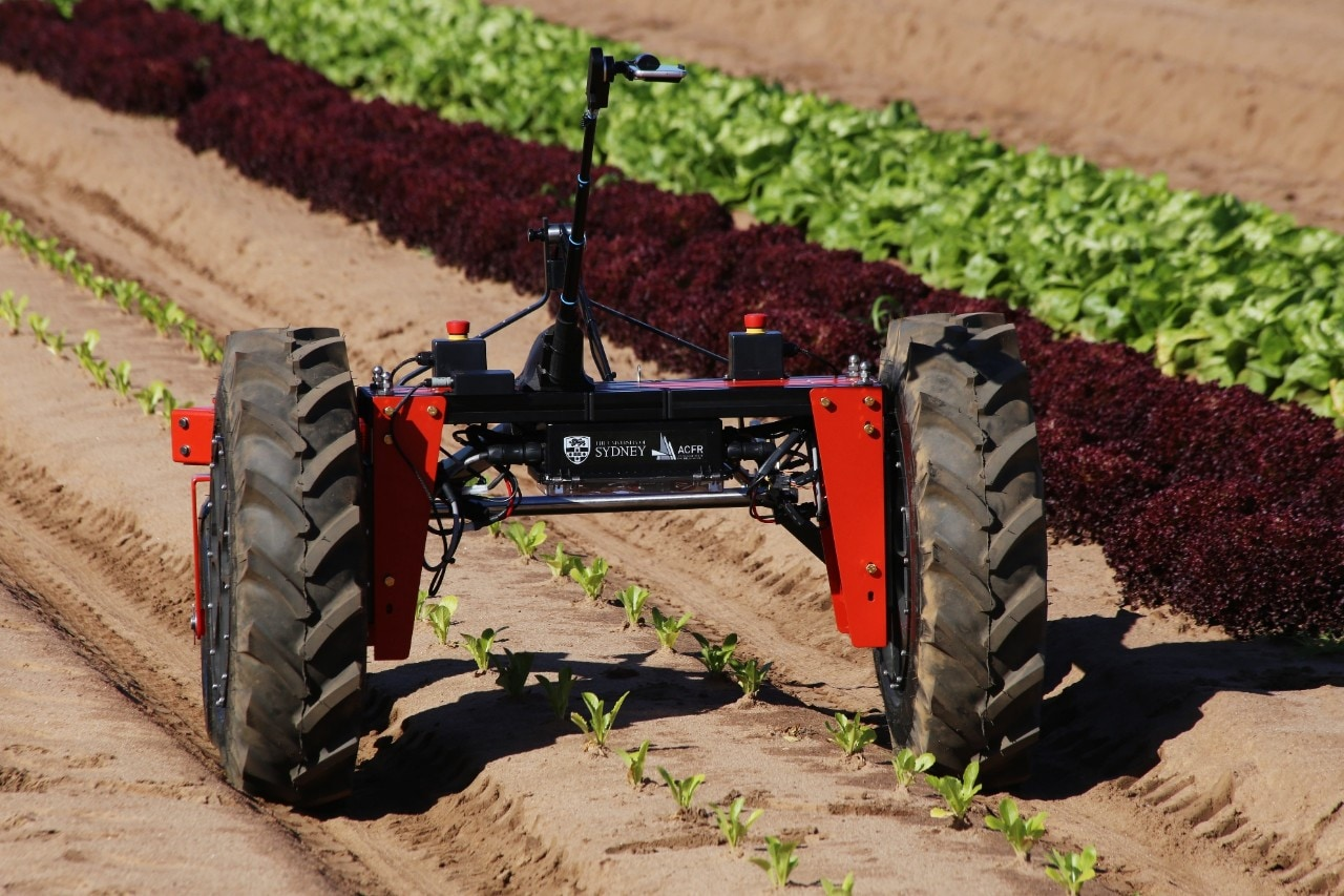 Agricultural robot digital farmhand on field