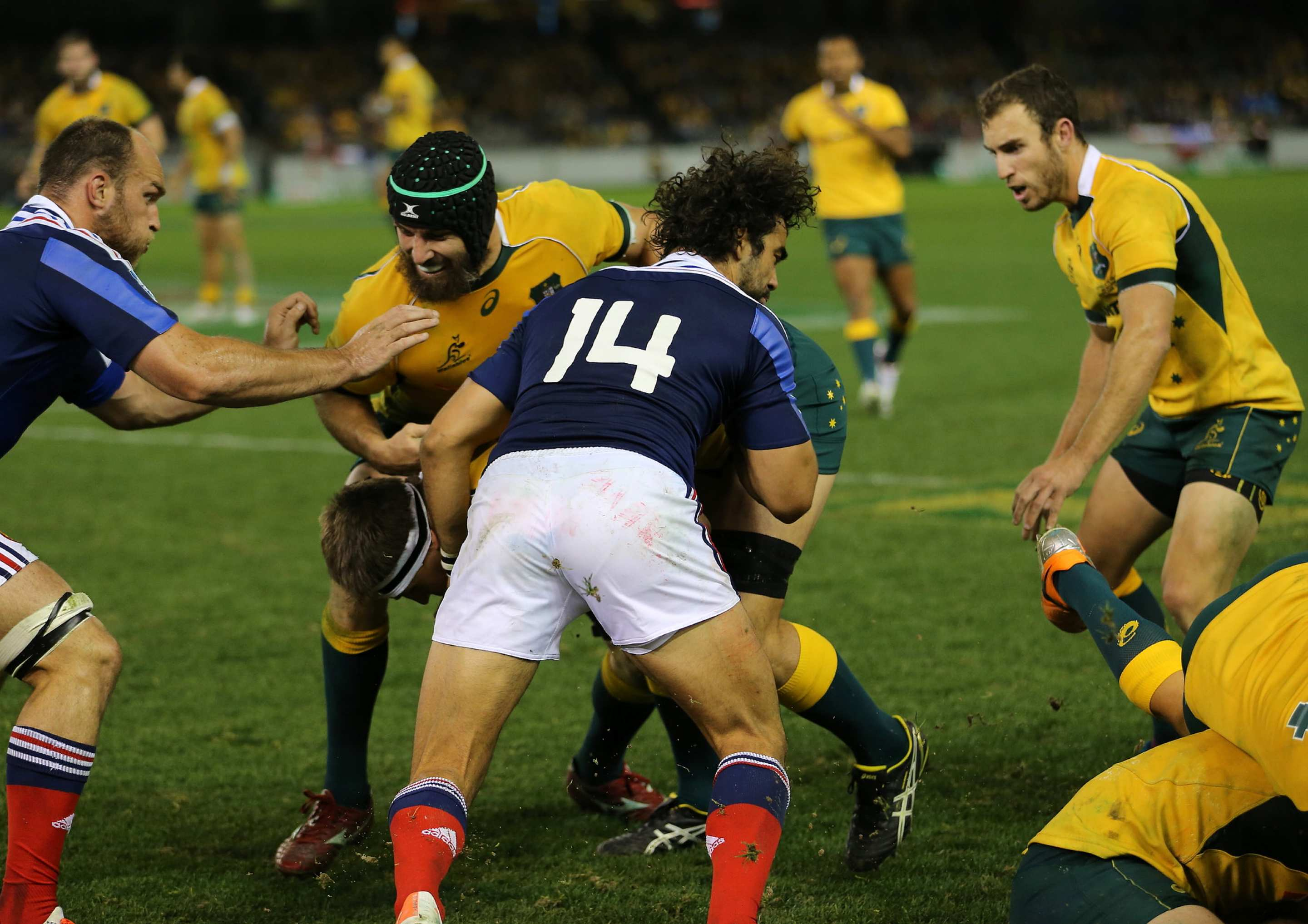 Wallabies play France