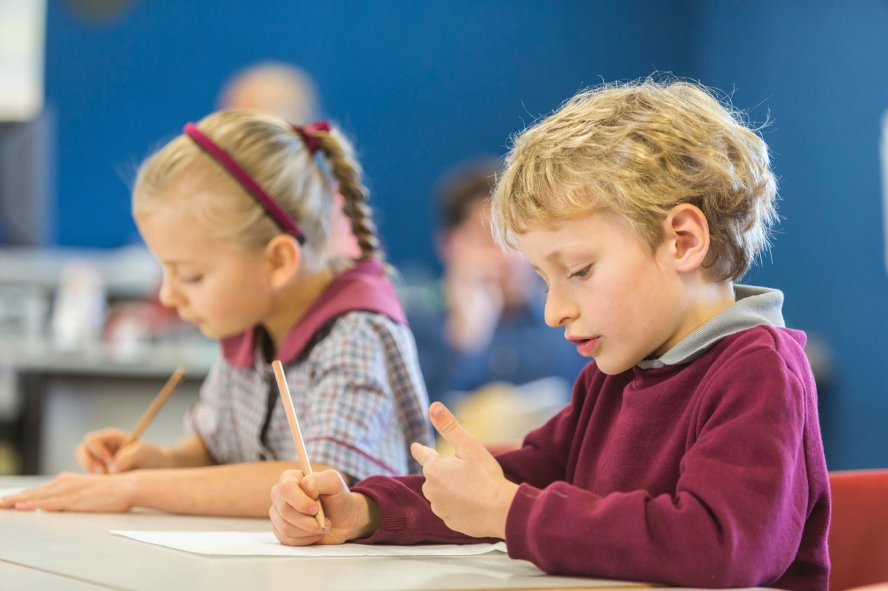 A boy and girl student tackle maths questions in class. Image: iStock