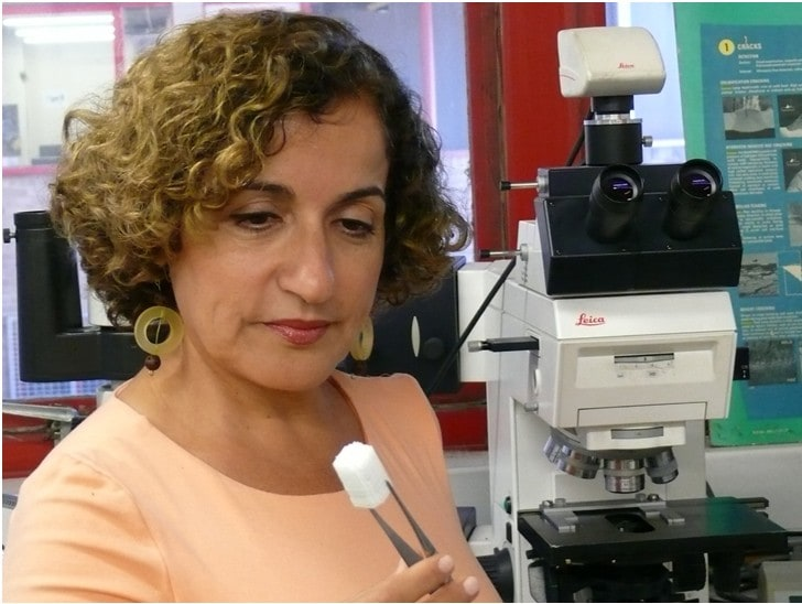 Professor Hala Zreiqat AM holding a 3D-printed bone scaffold