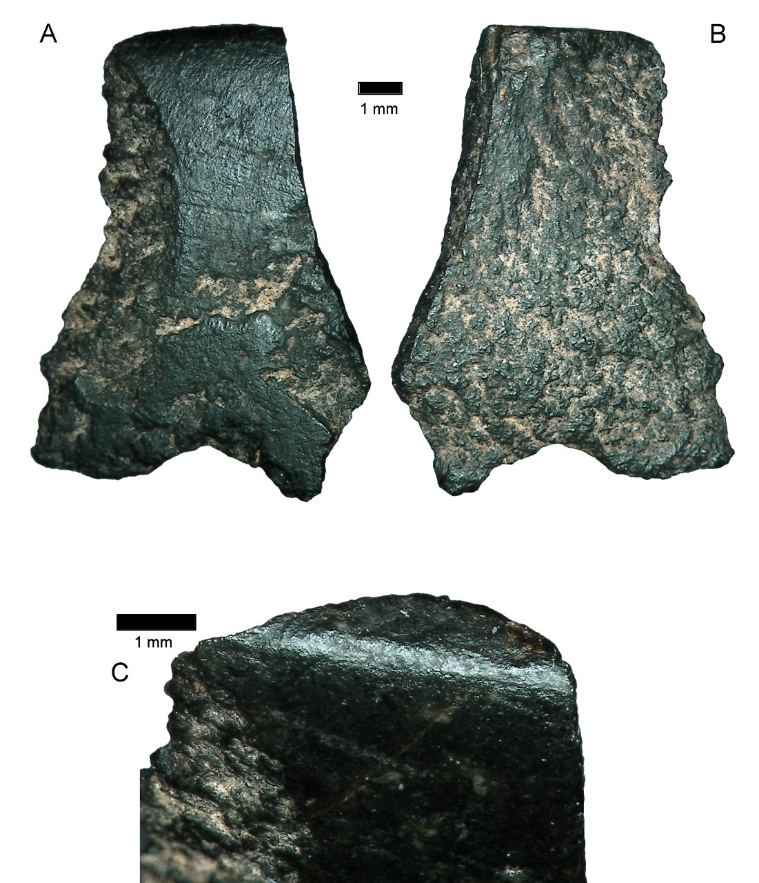 World's oldest axe fragment