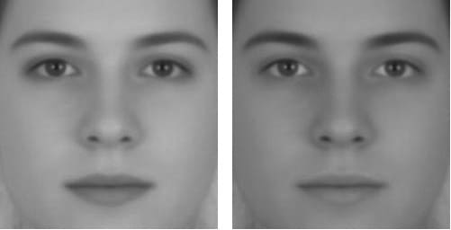 Two images of the same face - the face on the left has been lightened and appears more feminine, the face on the right has been darkened and appears more masculine.