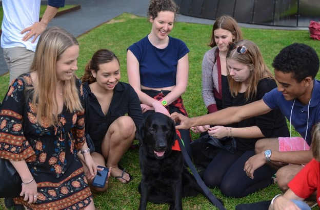 Therapaws program with dog and people patting dog