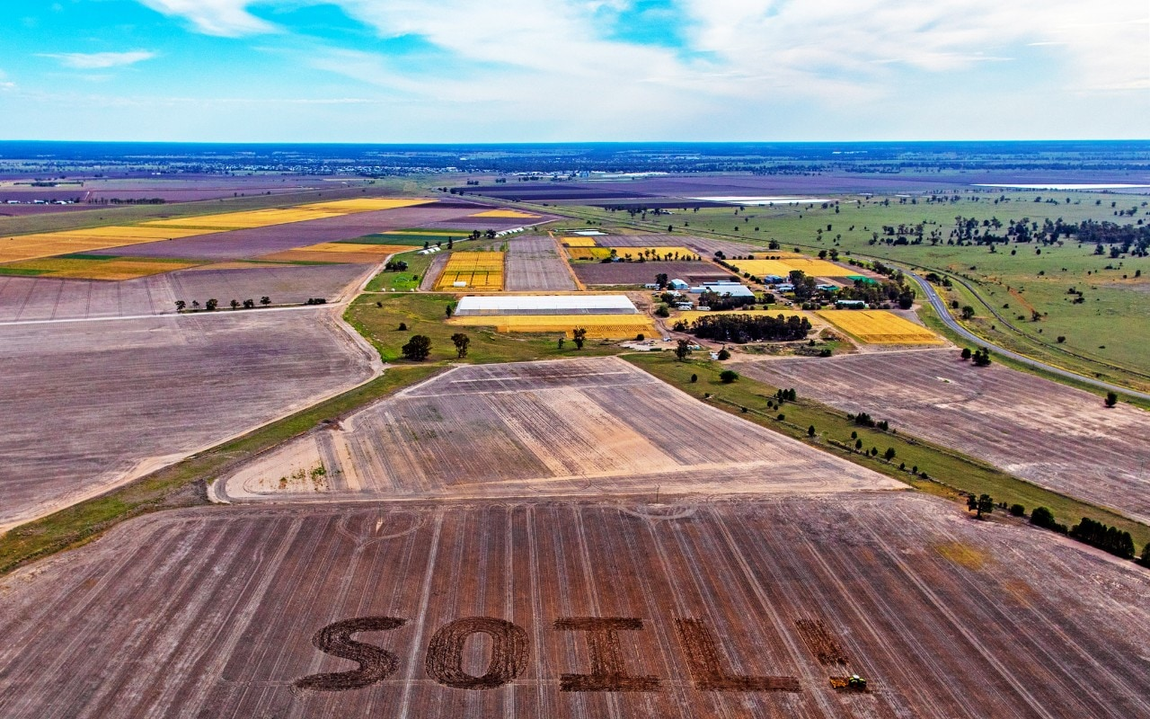 World Soil Day is December 5, as celebrated at the University's research farm, Narrabri.