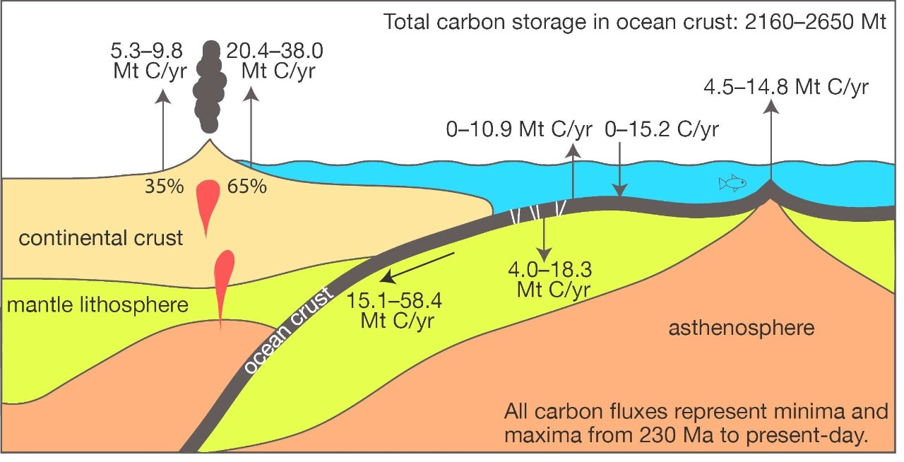 The oceanic slow carbon cycle. Credit: Adriana Dutkiewicz