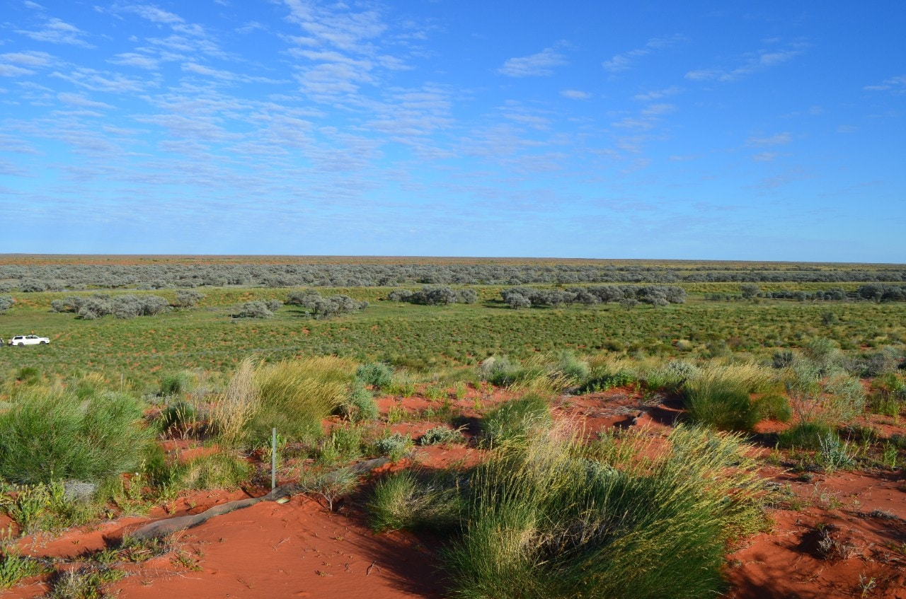 photo of the Simpson Desert
