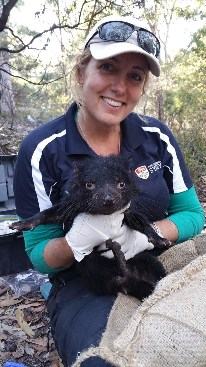 photo of Dr Carolyn Hogg holding a Tasmanian devil in the wild