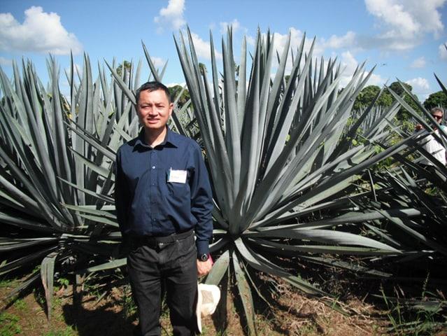 クイーンズランド州アイルにあるリュウゼツランの植物の前にいるダニエル・タン准教授。