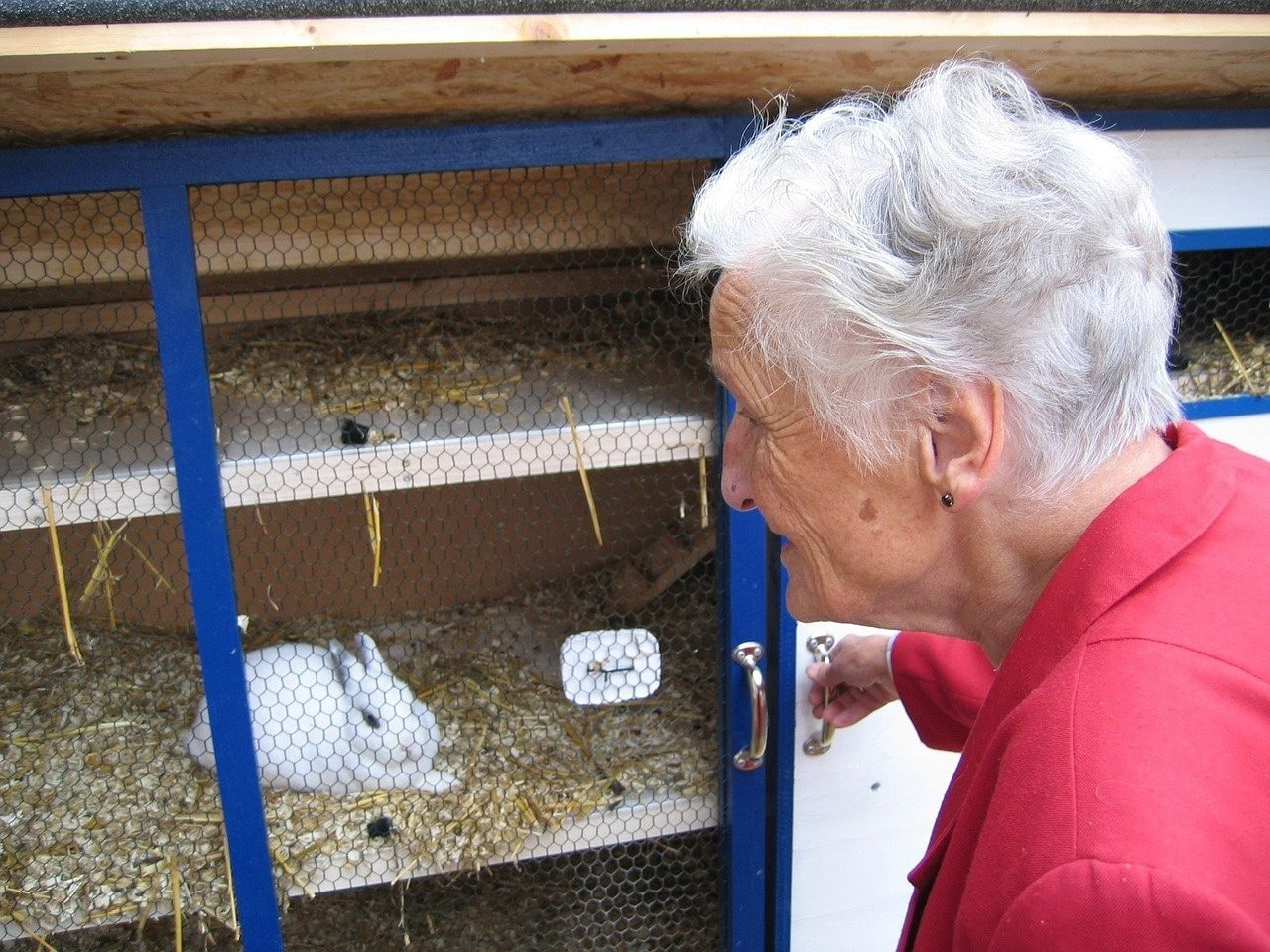 photo of a woman looking at her rabbit in a hutch