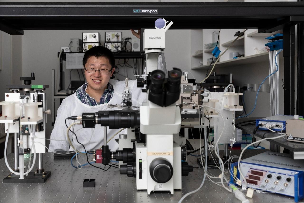 Professor Lining Arnold Ju