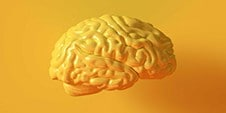 A yellow animated brain on a well background