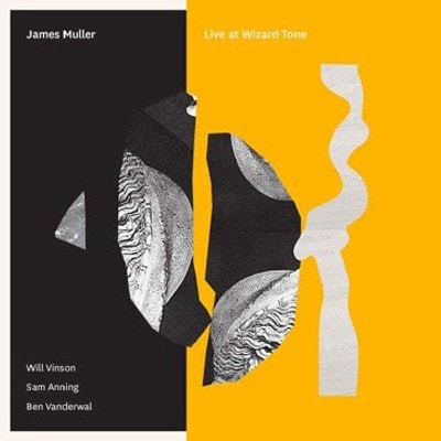 James Muller: Live at Wizard Tone album cover