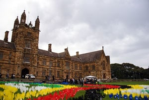 The Sea of Hands will cover the University's Front Lawn during Reconciliation Week.
