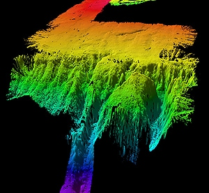 A sonar image of the underwater land masses.