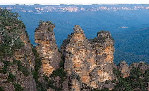 The blue haze which gives the Blue Mountains their name is a result of plants releasing a wide variety of oils.