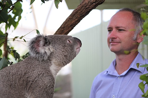 Dr Higgins is director of the Koala Health Hub which will provide koala carers with better access to tests and expertise.