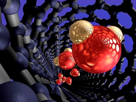 Nanotube inflitration in action