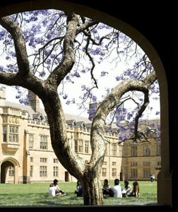 A view of the interior of the Quadrangle