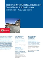 Commercial & Business Law Flyer