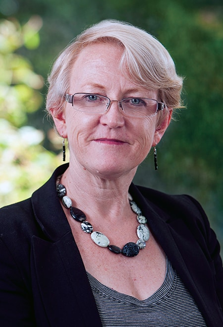 The Dean, Professor Joellen Riley