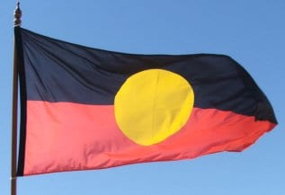 Aboriginal flag - small image