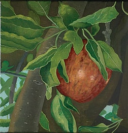David Keeling Apple on a tree 2003 oil on linen courtesy Niagara Galleries Melbourne.