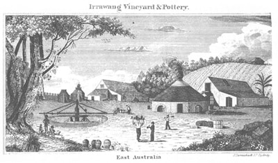 Carmichael, Irrawang Vineyard and Potter