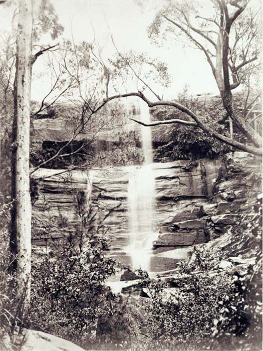 Willoughby Falls, Sydney