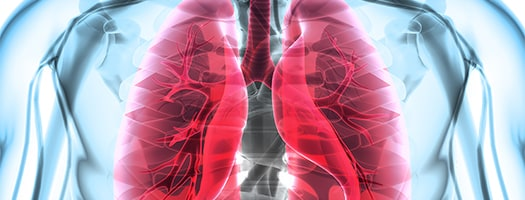 respiratory and infectious disease banner