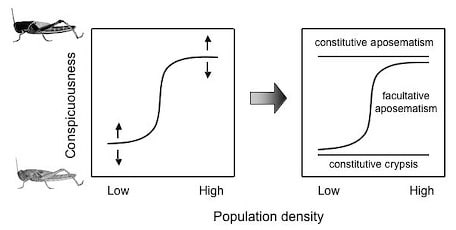 of individual based simulation models to examine the effects of plasticity on the initial evolution of warning coloration under a variety of ecological - Simulation Coloration