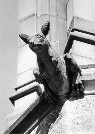 Kangaroo gargoyle, with a missing paw