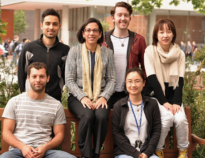 Neto research group 2014