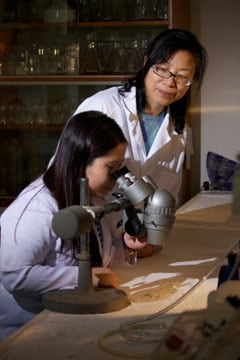 Associate Professor Min Chen, winner of the Science Minister's Prize for Life Scientist of the Year, with her Masters student Clarissa Kristanto. Photo: Prime Minister's Science Prizes/Bearcage.