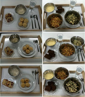 Protein diets: the three photos in the left column are the 10%, 15% and 25% (top to bottom) versions of breakfast given to participants; the three photos in the right column are the 10%, 15% and 25% (top to bottom) versions of dinner given to participants in the study.