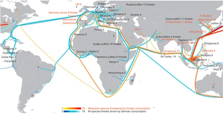 Professor Manfred Lenzen and team have mapped how global trade and consumption effects biodiversity. This flow map shows threats to species caused by exports from Malaysia (reds) and imports into Germany (blues). Note that the lines directly link the producing countries, where threats are recorded, and final consumer countries.