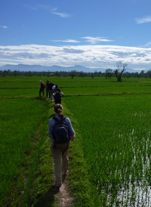 Students exploring rice fields in Thailand - Isabelle Whitehead